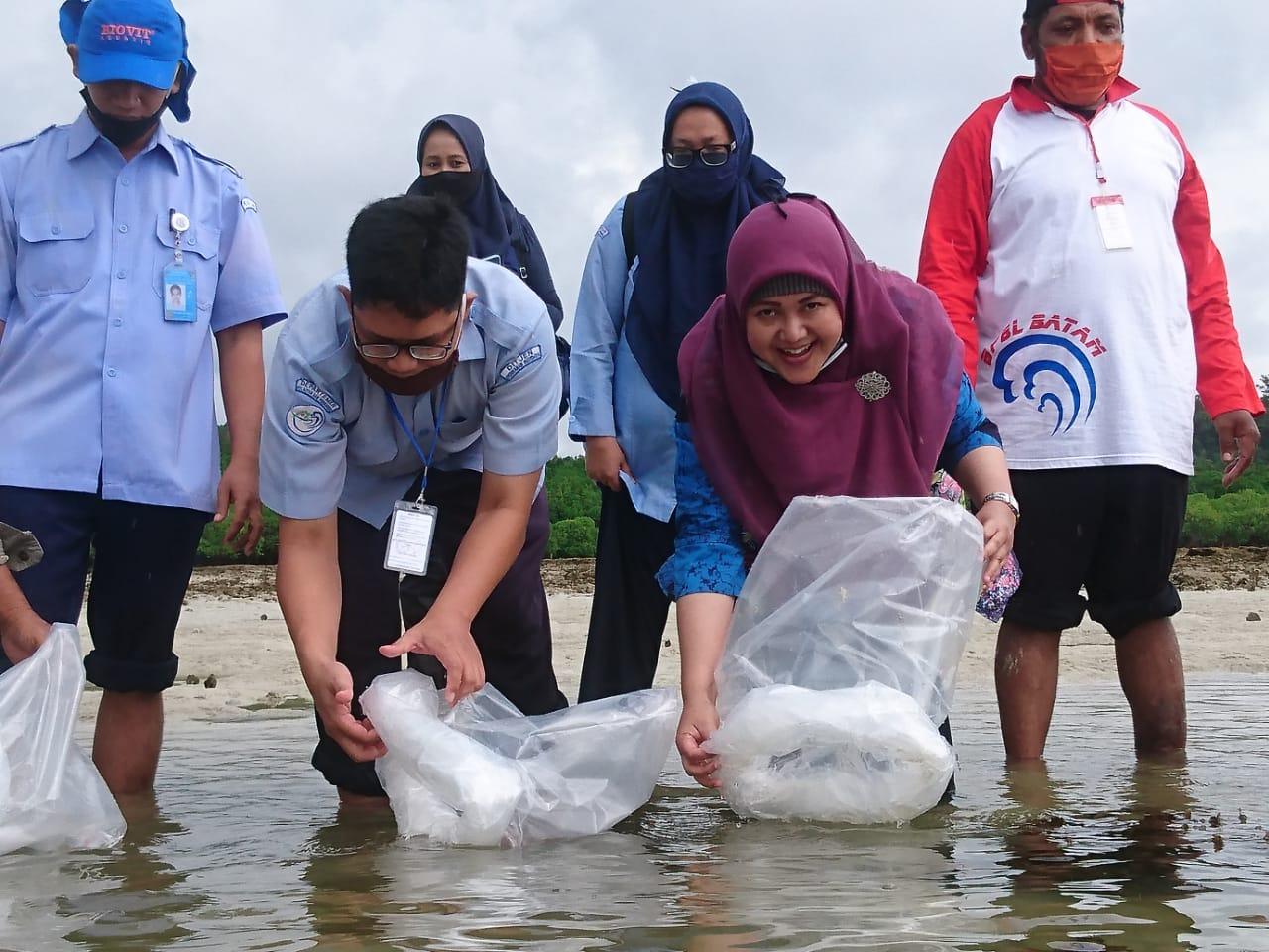 Restocking Benih Ikan Hias Jenis Nemo sebanyak 4000 ekor diperairan pulau Abang Galang-Batam Kepri bersama Bp. Rahmat Ketua (LPSTK) Kota Batam-Kepri, 9/7/20 - Restocking